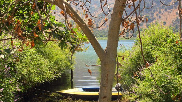 Lacul Kournas, Creta