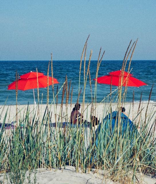 plaja Vadu trucuri foto pentru plajă