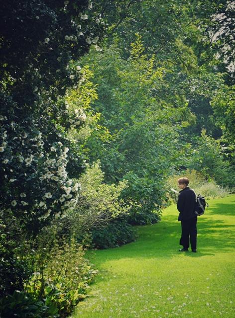 Edinburgh Grădina Botanică Regală