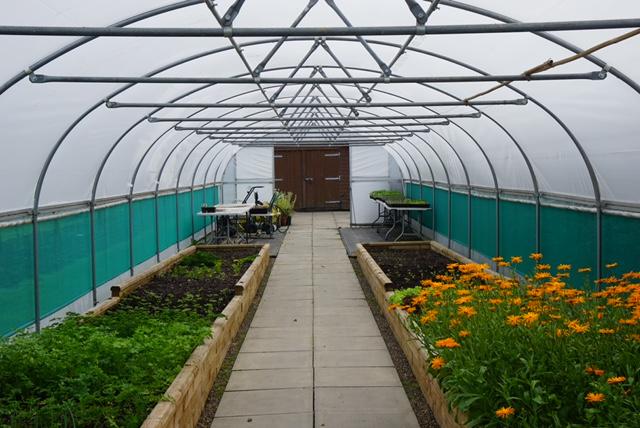 de vizitat gratis în Edinburgh Grădina Botanică Regală